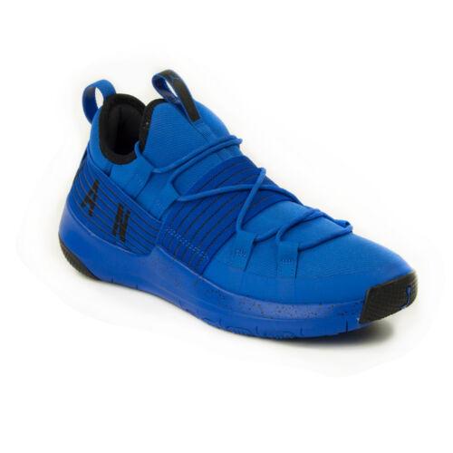 Nike Air Jordan Trainer Pro  Férfi Kosárlabdacipő